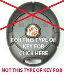 Not This Type Of Key Fob